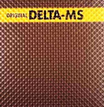 Геомембрана Delta MS
