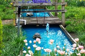 Проект водоема ограничивается лишь фантазией хозяина участка