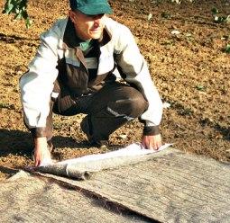 Укладка биоматов
