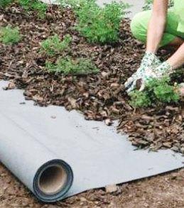 Применение геотекстиля от прорастания сорняков